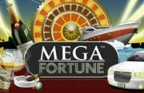 record mega fortune